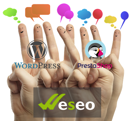 Posicionamiento SEO - Wordpress y Prestashop